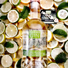 Load image into Gallery viewer, Lemon and Lime Gin 500ml
