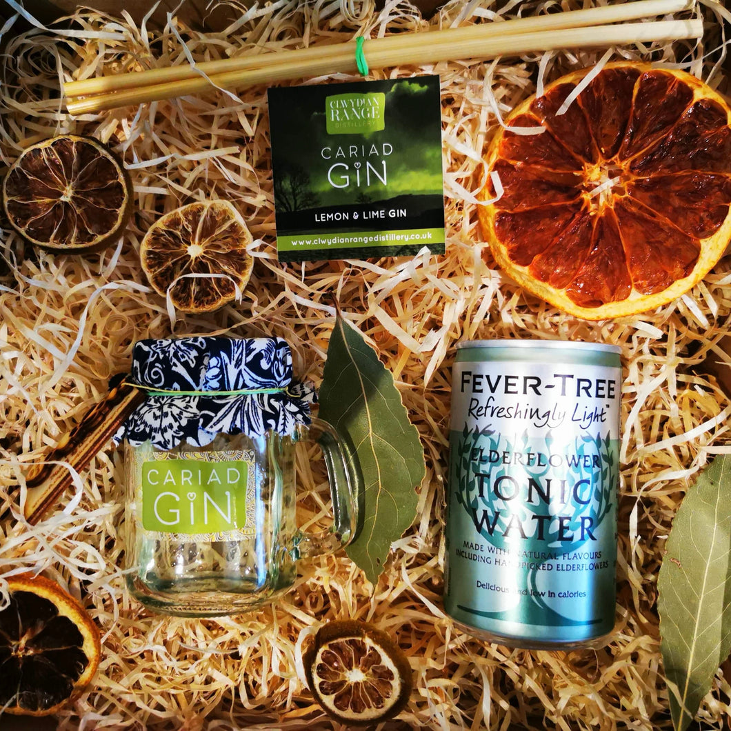 Lemon and Lime Gin Gift Box 100ml