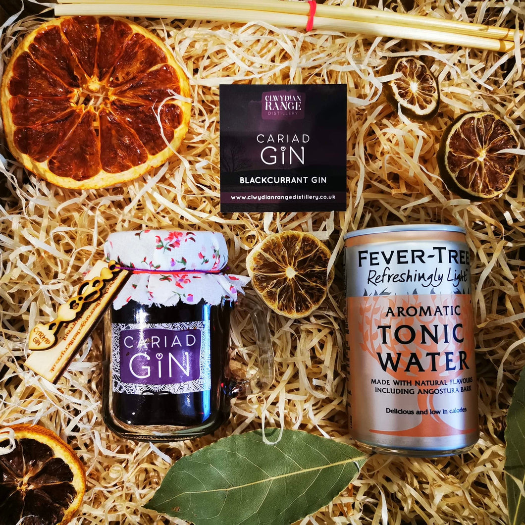 Blackcurrant Gin 100ml Gift Box