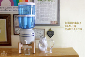 Branch Basics | Choosing a Healthy Water Filter