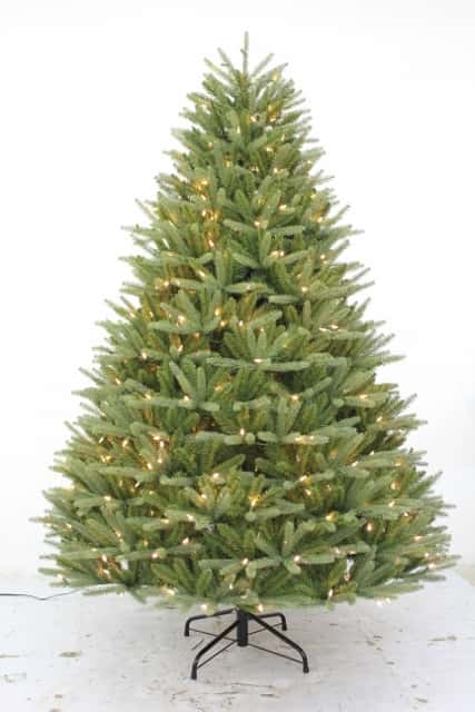 8' Ultra-Lit LED Auburn Fir Clear