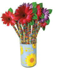 Load image into Gallery viewer, Daisy Topper Rainbow Sunny Seeds® 4oz.