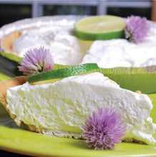 Load image into Gallery viewer, Key Lime No Bake Cheesecake