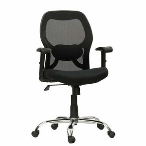 Chair with Lumbar Back Support, Ergonomic Design  for Home or Office