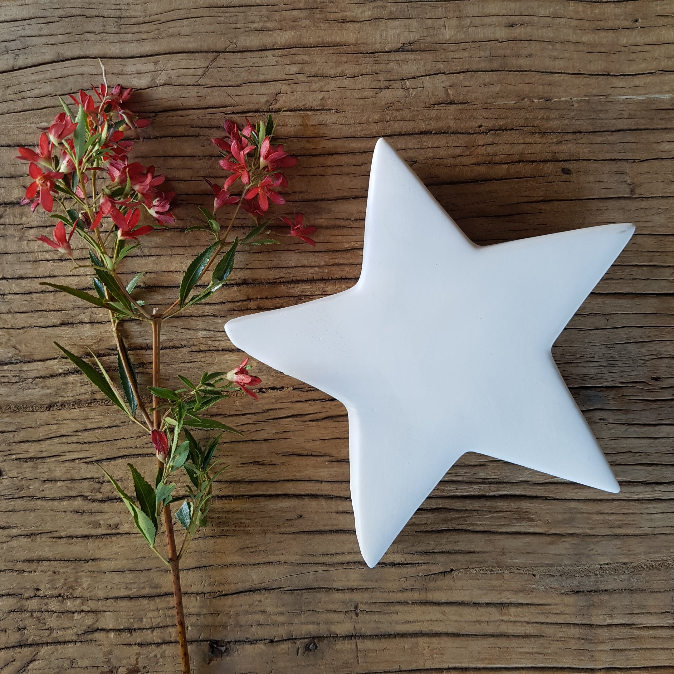 Porcelain Xmas Star