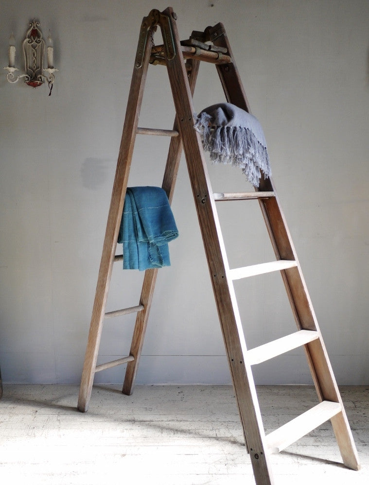 French Industrial Ladder