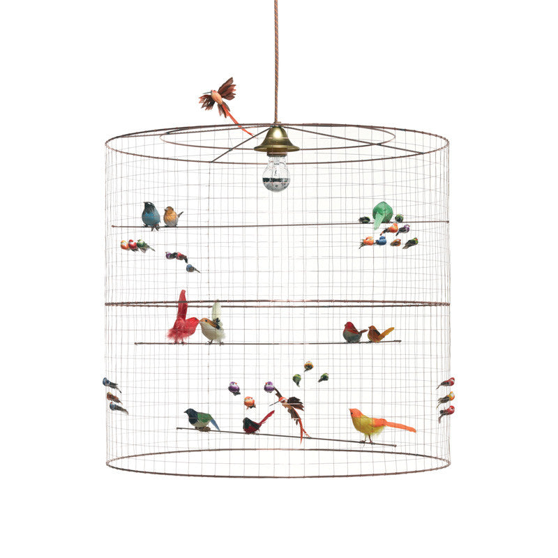 French Bird Light-X large