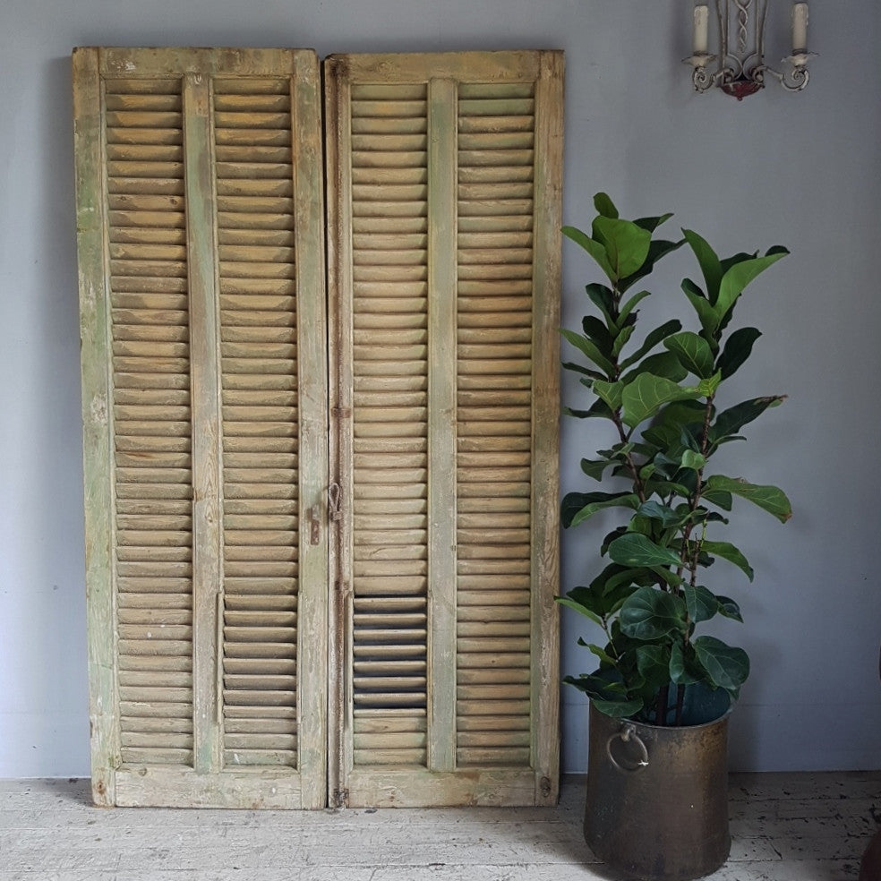 Set A- French Pine Shutters
