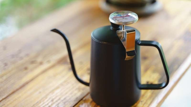 Temperature-controlled water kettle for coffee