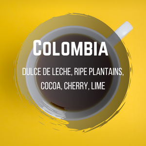 Colombia - Toro Family Fincas- El Vergel (One of our best sellers after Conquistador)
