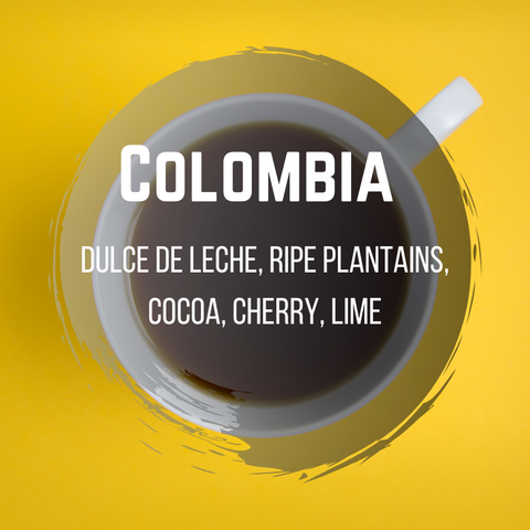 Colombia - Toro Family Fincas- El Vergel (One of our best sellers after VERITAS)
