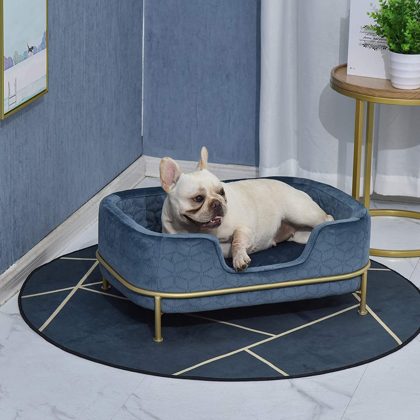 PawHut Pet Sofa Dog Bed Couch Cat Kitten Sponge Removable Cushion Lounge Metal Stand Elegant Bed Seat Furniture Blue 63.5 x 43 x 24.5 cm