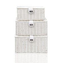 Load image into Gallery viewer, Arpan Set of 3 Resin Woven Storage Basket Box