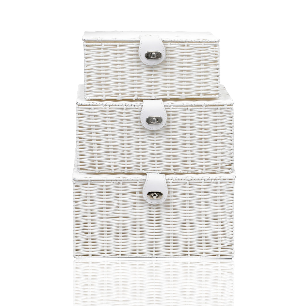 Arpan Set of 3 Resin Woven Storage Basket Box