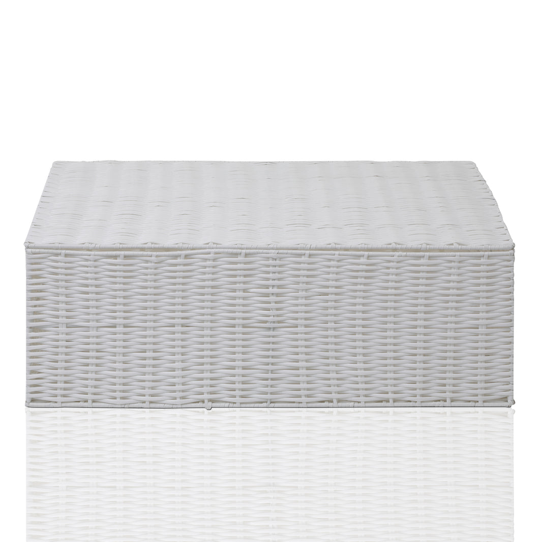 ARPAN Resin Woven Under Bed Storage Box, Chest Shelf Toy Clothes Basket With Lid - White