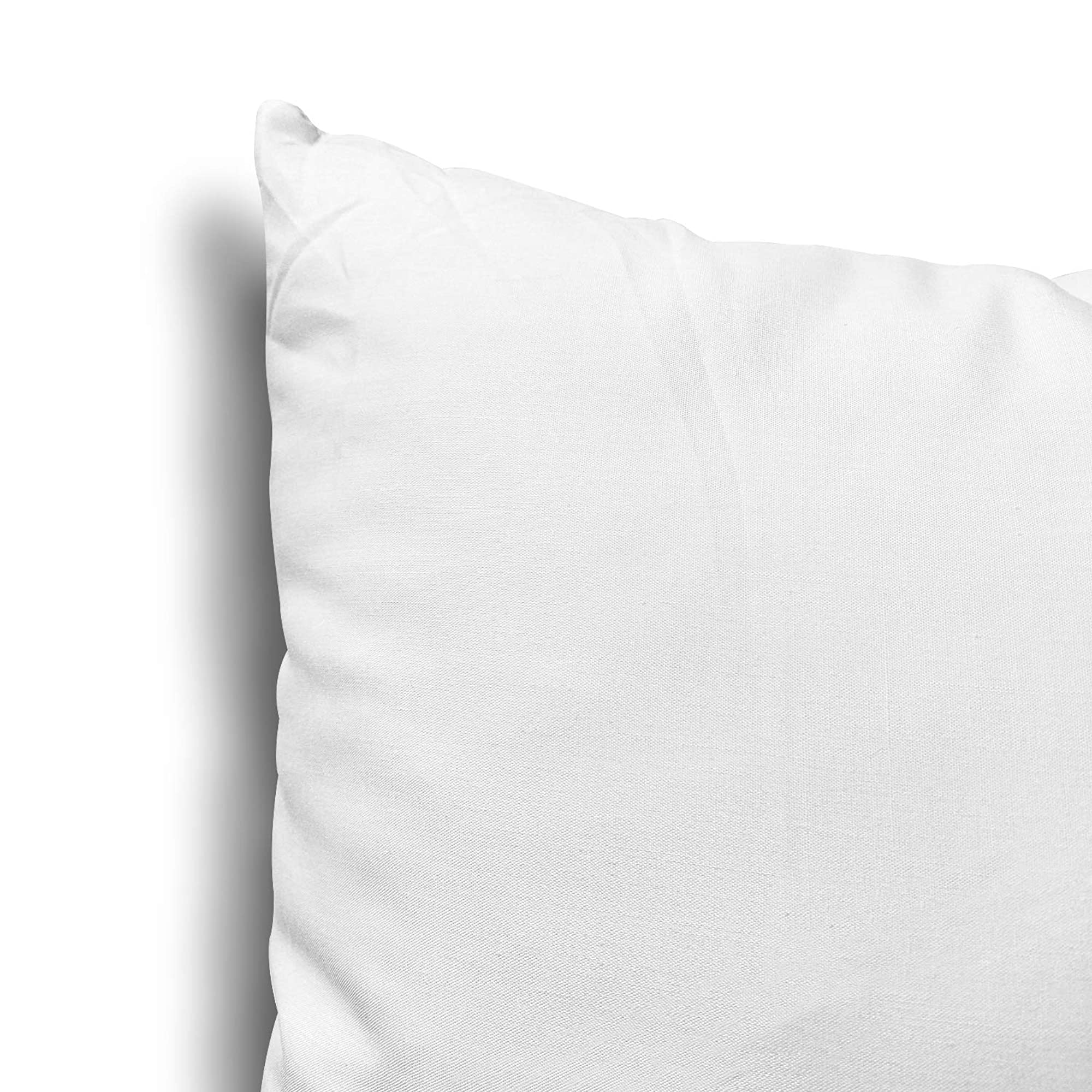 Lightweight Throw Pillow Inserts, Set Of 2