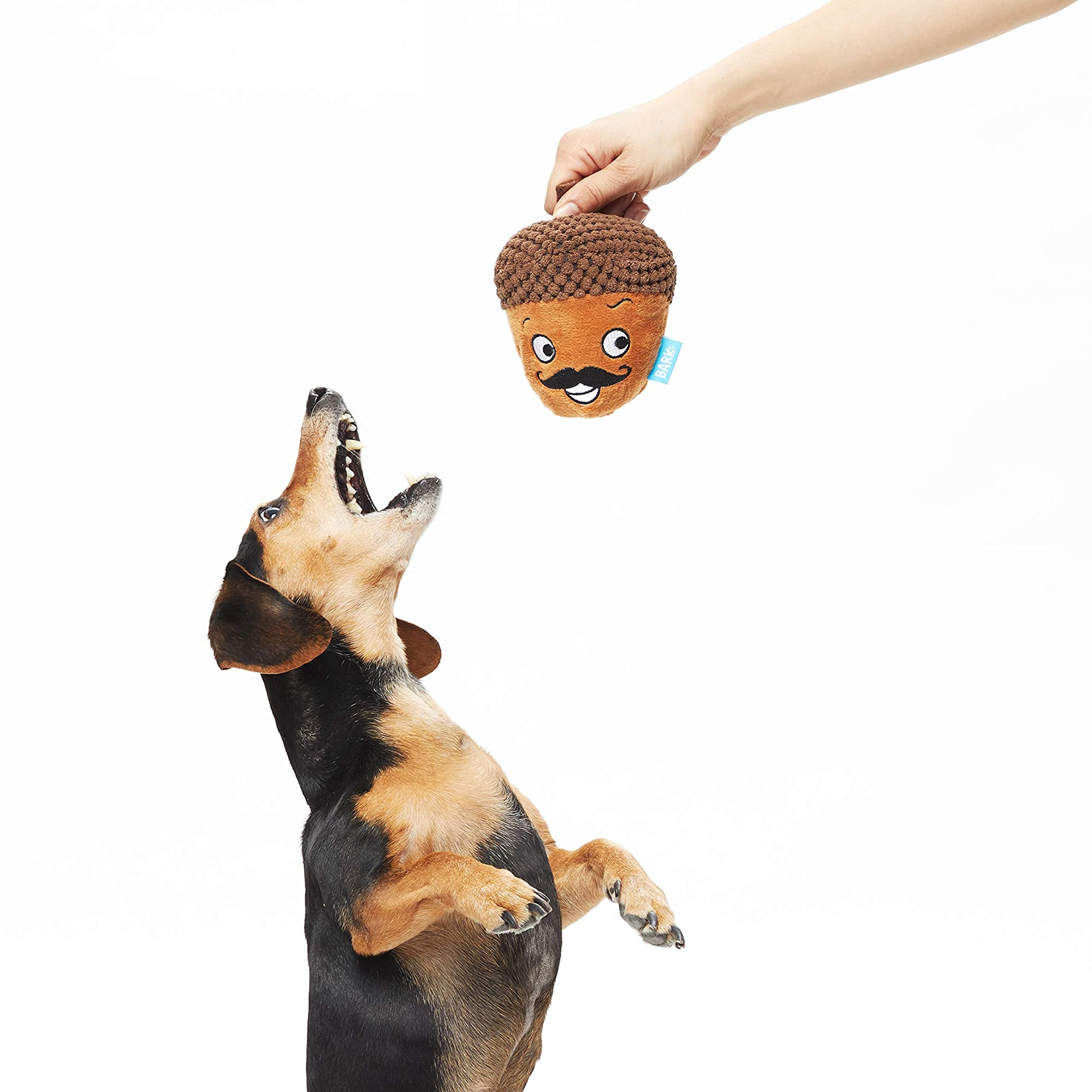 Dog Squeak Toys   2-In-1 Interactive Toys For Chewers