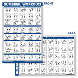 Laminated Dumbbell Workout Exercise Poster