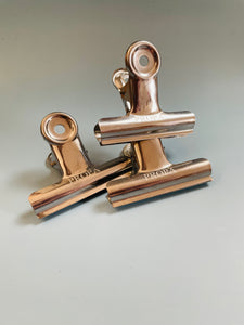 PROPA Clips of Metal for Sealing Bags, Air Tight Seal, Good Grip, for Chips Bag and Snacks Bag Sealing, 2.95 Inch, 12 Pcs