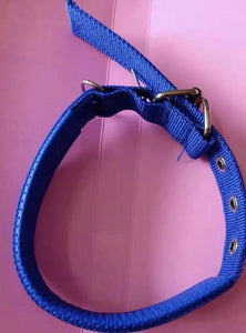 Kuxing collars for animals, adjustable nylon collars with with durable ring, for small, medium and large dogs