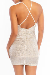 Elegant Strap Nude Silver Sequence Deep V-Neck Tie-Up Dress