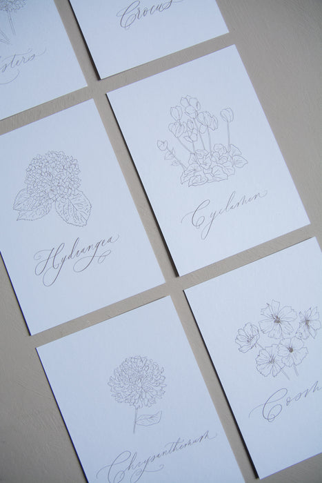 Autumn Flowers Postcard Set