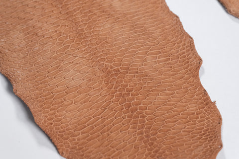 "Beaver tails have an incredibly unique pattern that is ideal for fine leather work, inlay and small accessories.  The leather is naturally waterproof, and the natural vegtan surface provides a great blank canvas to dye and custom paint to your delight.  These hides are sustainably sourced in Canada, and are tanned in Canada. The North American beaver is a wonderful ""exotic"" leather alternative."