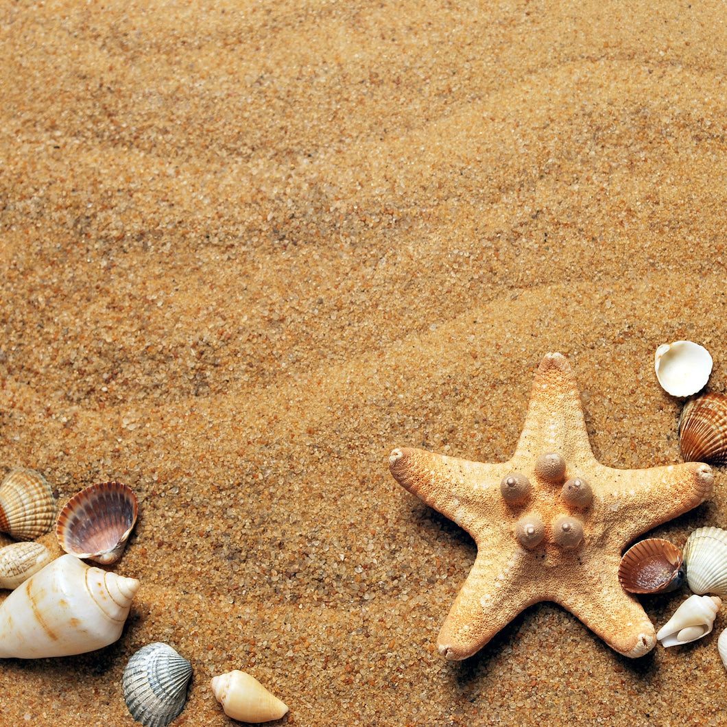 Lesson plan: Crafting  sticky sand