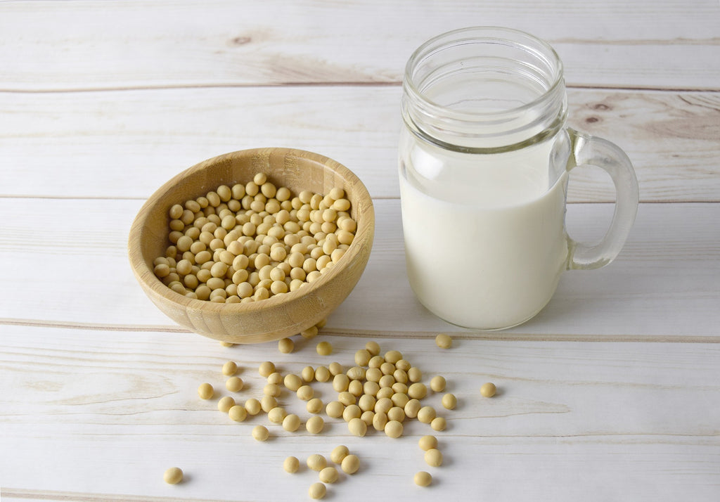 Everything You Need to Know about the Benefits of Vegetable Milk