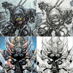 Last Ronin 1/TMNT 106 Set (Features all 4 of our Evolve Exclusive Variants)