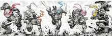 Load image into Gallery viewer, TMNT 108-112 Evolve Comics and Collectibles Exclusive Ink Wash and Color Connecting Cover