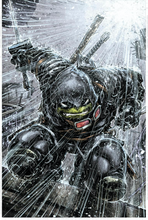 Load image into Gallery viewer, Last Ronin 1 and TMNT 106 Evolve Exclusive Color Variant Set (Pre-Sale Item)