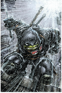 Last Ronin 1 and TMNT 106 Evolve Exclusive Color Variant Set (Pre-Sale Item)