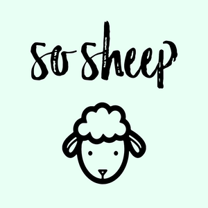 so sheep