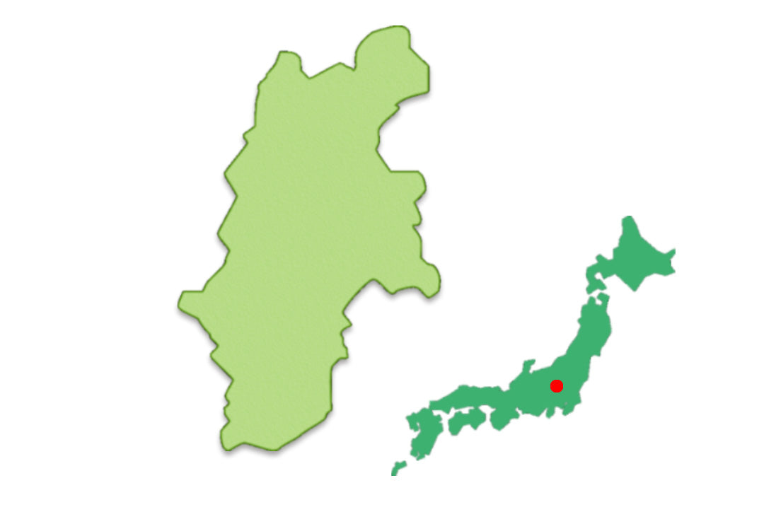 Nagano in Chubu region, well connected with major cities of Japan.