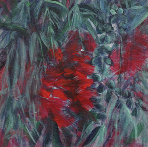 Brilliant Red Bottlebrushes-Weeping Bottlebrush