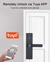 Wifi Smart Biometric Fingerprint Door Lock