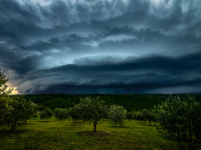 Olivetrees and Stormcell - Fine Art Print manumo-photography.