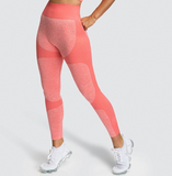 Women's High Waist Seamless Leggings in Various Colours