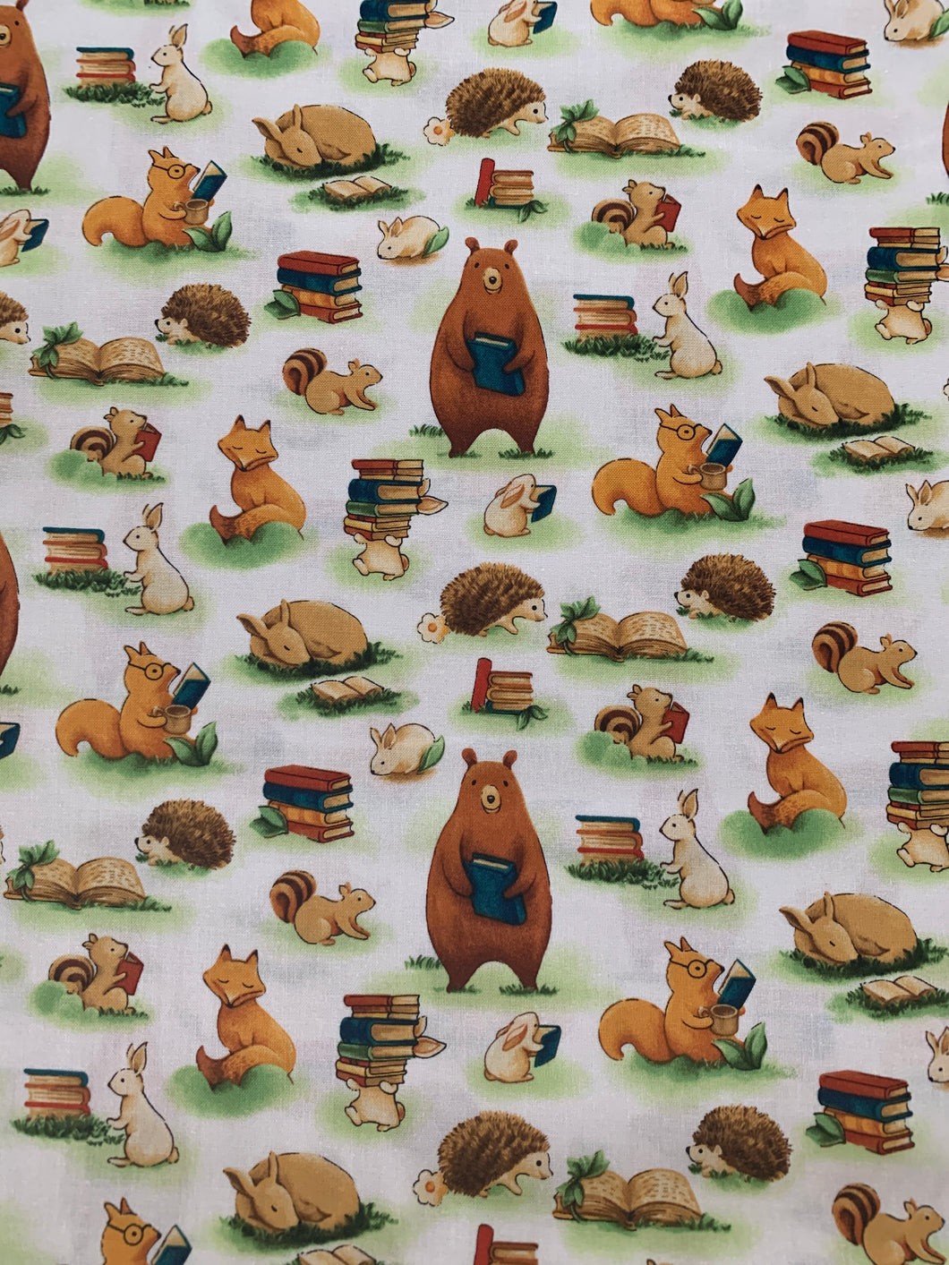 Forest Fables | Animals and Books | Paintbrush Studio