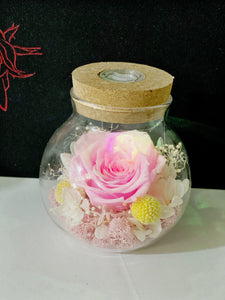 Preserved rose in wishing bottle with LED light