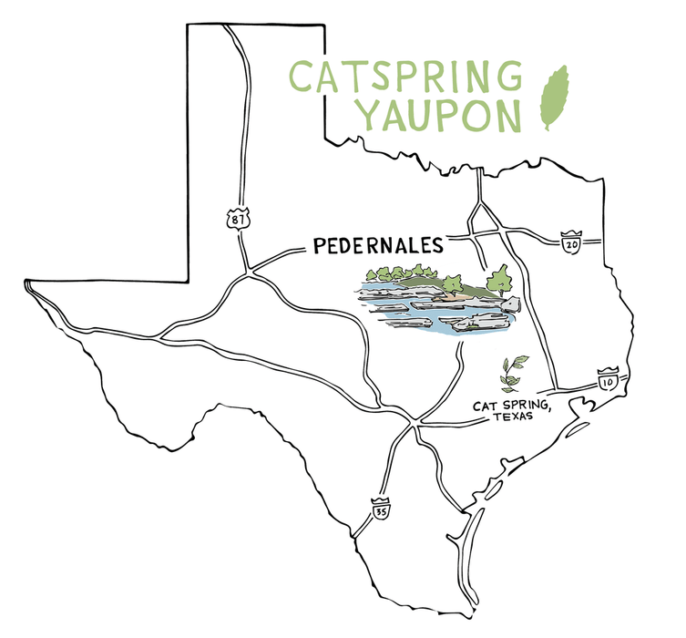 Pedernales - Green Yaupon (Loose Leaf & Teabags)