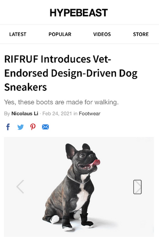 Hypebeast dog shoes dog boots and dog sneakers