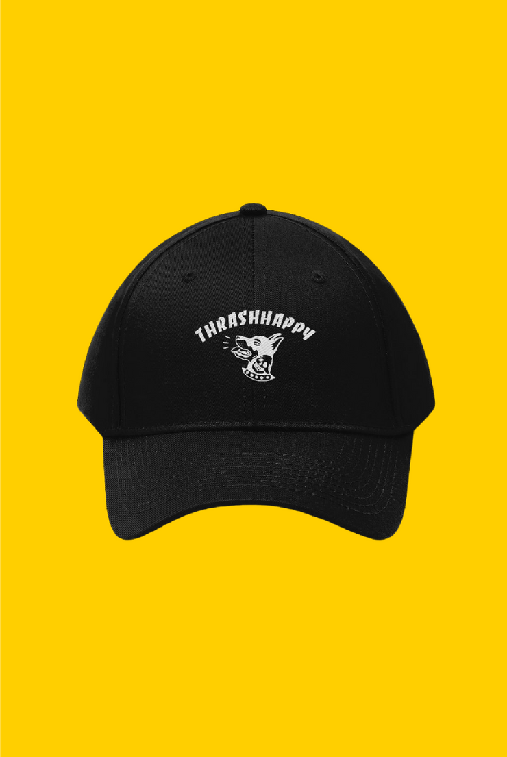 embroidered dad hat
