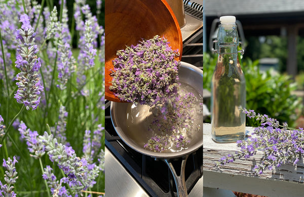 Lavender Simple Syrup Recipe — with Cocktail Suggestions!
