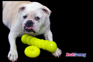 DAWG BUSTER XL - DOGS 40 LBS PLUS BY RUFF DAWG - Bulletproof Pet Products Inc