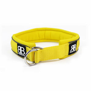 MARTINGALE RAMSEY RANGE 4CM COLLARS - YELLOW - BY BULLY BILLOWS - Bulletproof Pet Products Inc