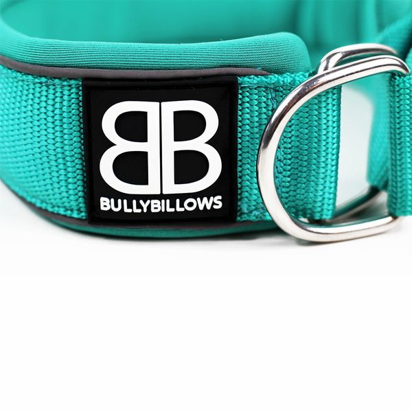 MARTINGALE RAMSEY RANGE 4CM COLLARS - TURQUOISE -BY BULLY BILLOWS - Bulletproof Pet Products Inc