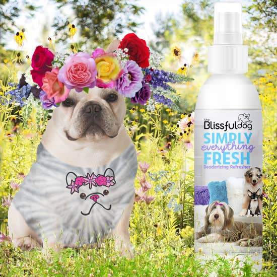 The Blissful Dog - Simply Everything Fresh Deodorizing Pet Spray 4 oz - Bulletproof Pet Products Inc