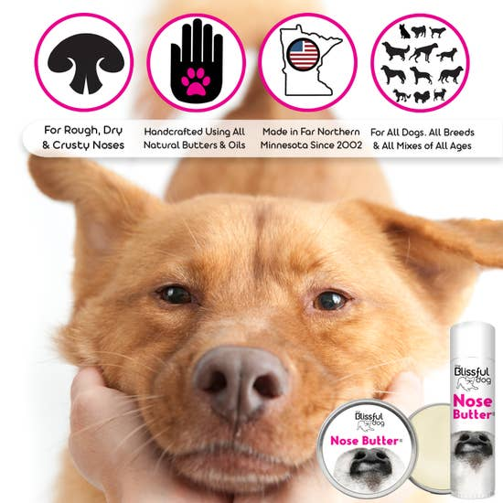 NOSE BUTTER - BY THE BLISSFUL DOG - Bulletproof Pet Products Inc